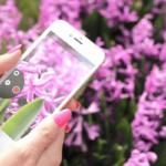 Cómo tomar fotografías con un fondo borroso en iPhone